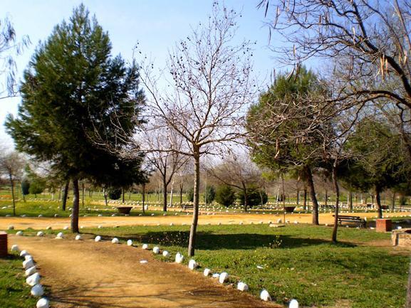 Sierra Sur y Campiña de Jaén