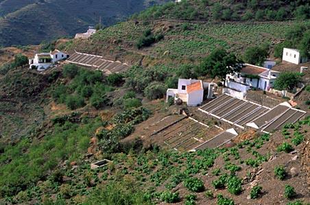 La Axarquía. Málaga