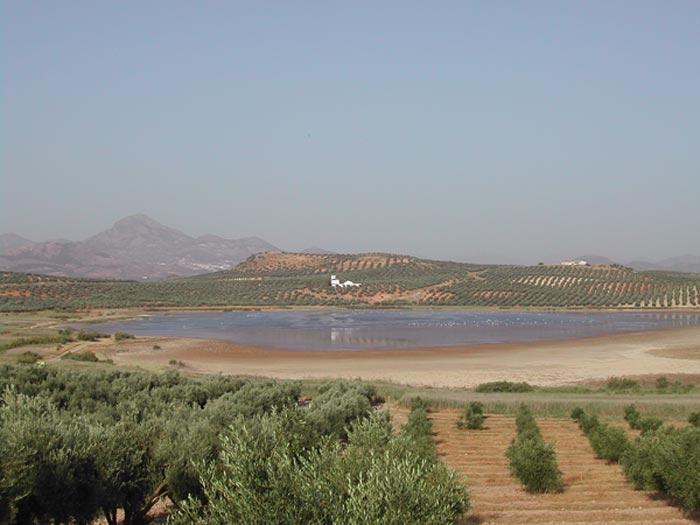 Reserva Natural Laguna del Conde o Salobral