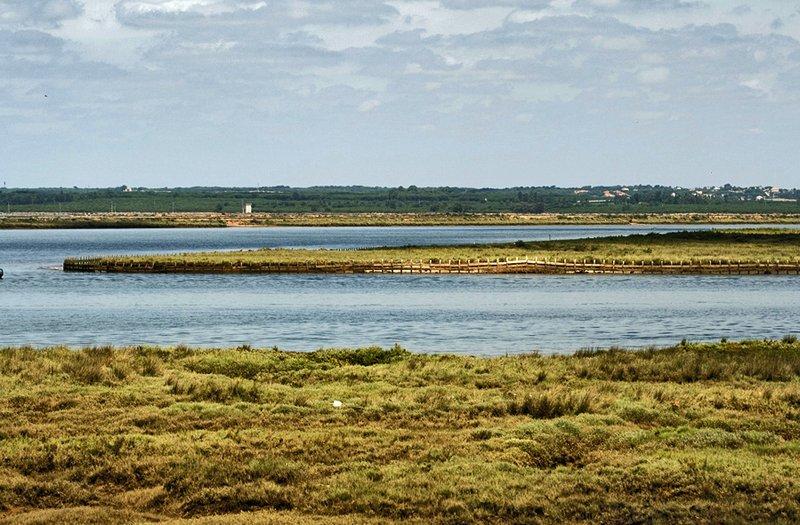 Reserva Natural Isla de Enmedio