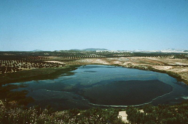 Reserva Natural Laguna Honda