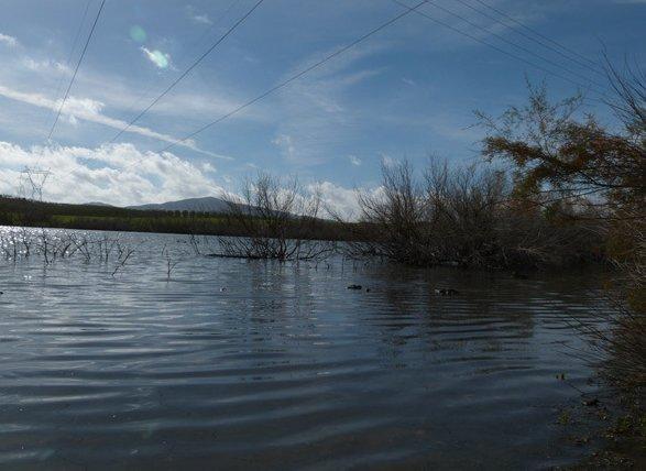 Reserva Natural Complejo Endorreico Lebrija-Las Cabezas