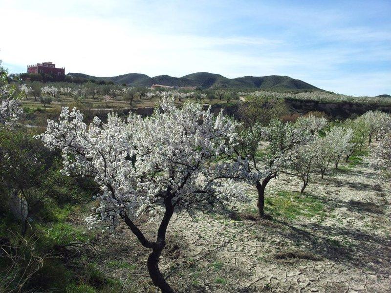 Paraje Natural Karst en Yeso de Sorbas