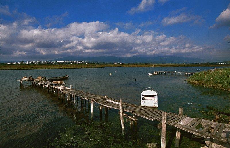 Paraje Natural Marismas del Río Palmones