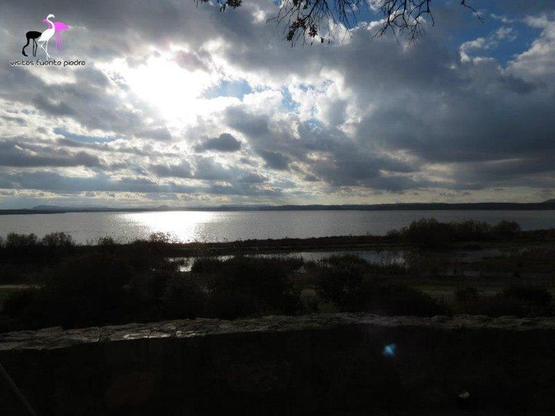 Reserva Natural Laguna de Fuente de Piedra