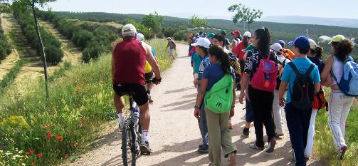 Vía Verde de Linares