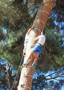 El Bosque Suspendido Official Andalusia Tourism Website