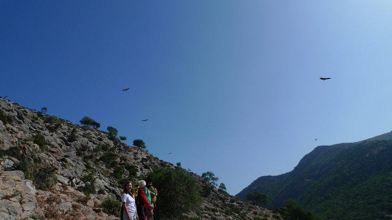 Monumento Natural Cañón de las Buitreras