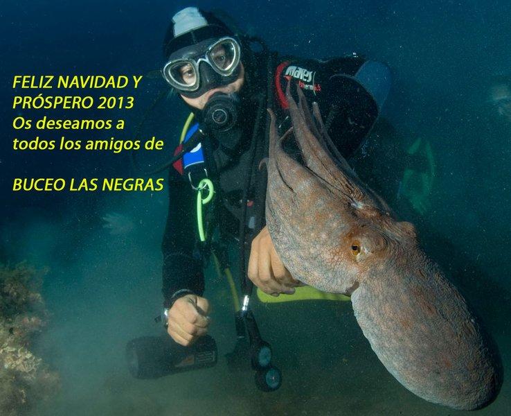 Buceo Las Negras