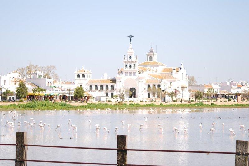 Hamelin: Faro del Sur Viajes y Aventuras - Actividad  (Isla Cristina)