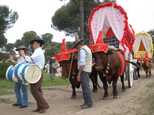 Viturevent Doñana