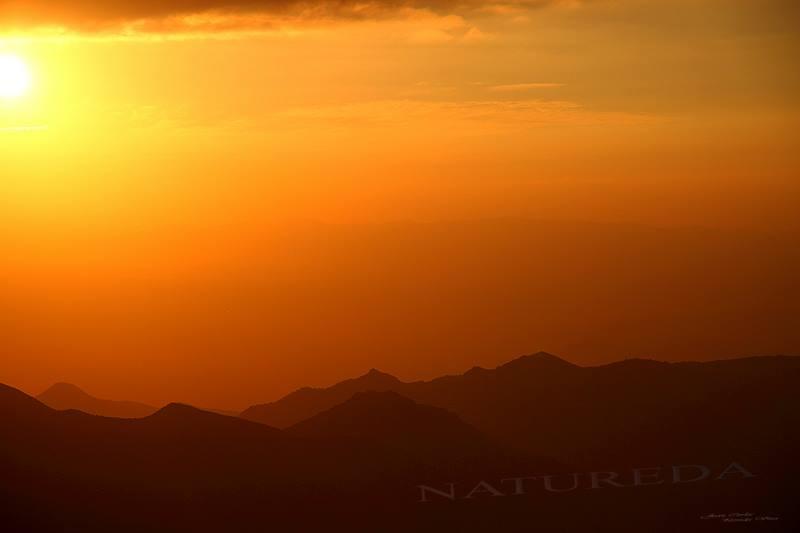 Natureda