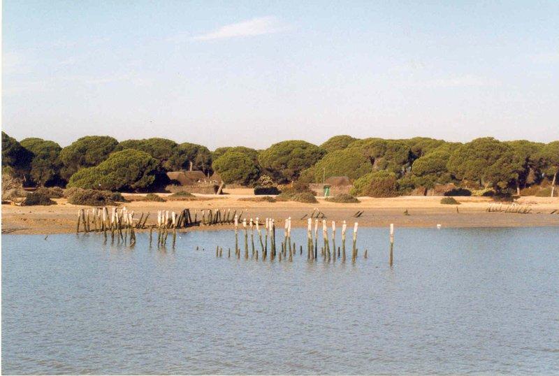 Doñana Pinar y Poblados
