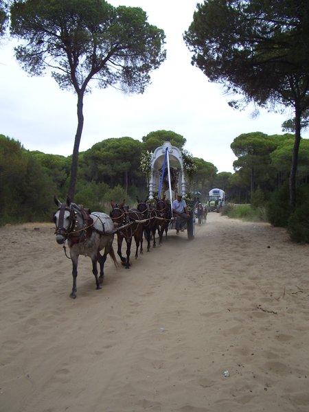Romeria el Rocio en Doñana