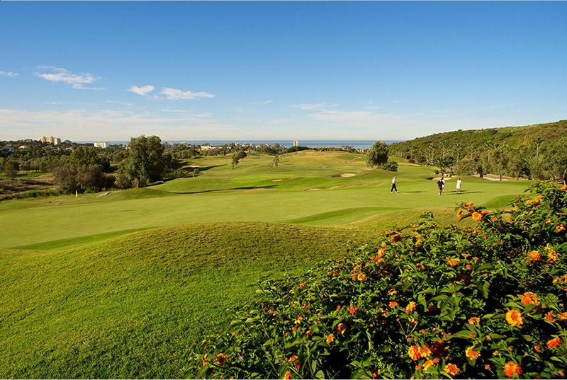 Paquete 10 green fees con buggy en Marbella Golf