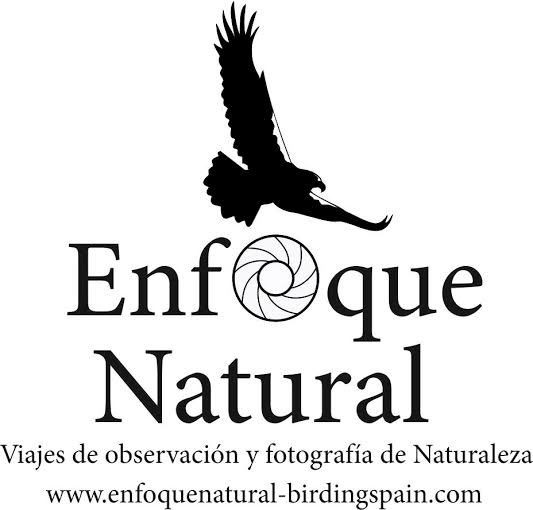 Enfoque Natural Birding Spain