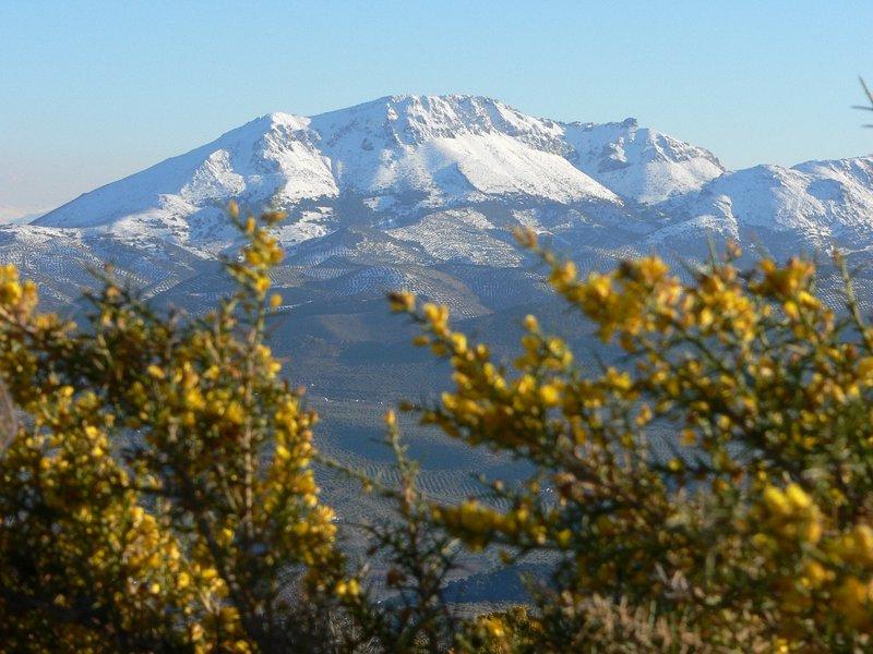 Pico de la Tiñosa