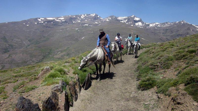 Sierra Trails