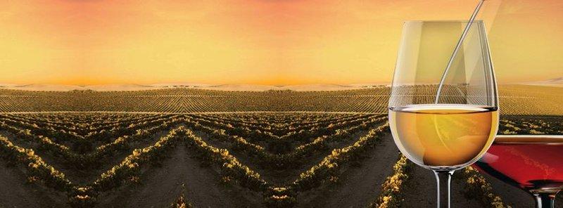 Ruta del Vino y el Brandy Marco de Jerez
