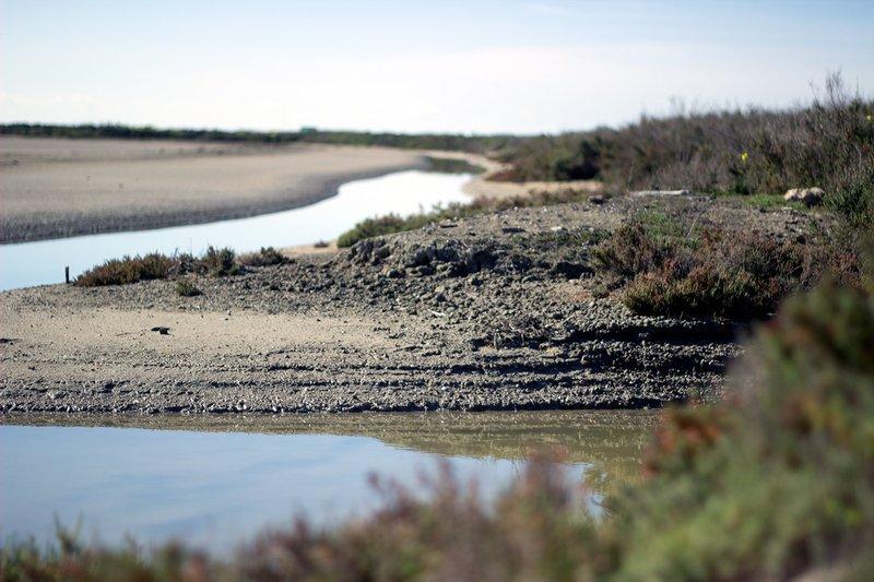 Parque natural Bahía de Cádiz
