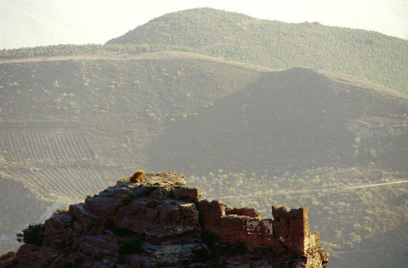 Hamelin: Pack City & Nature - Actividad  (Almería)