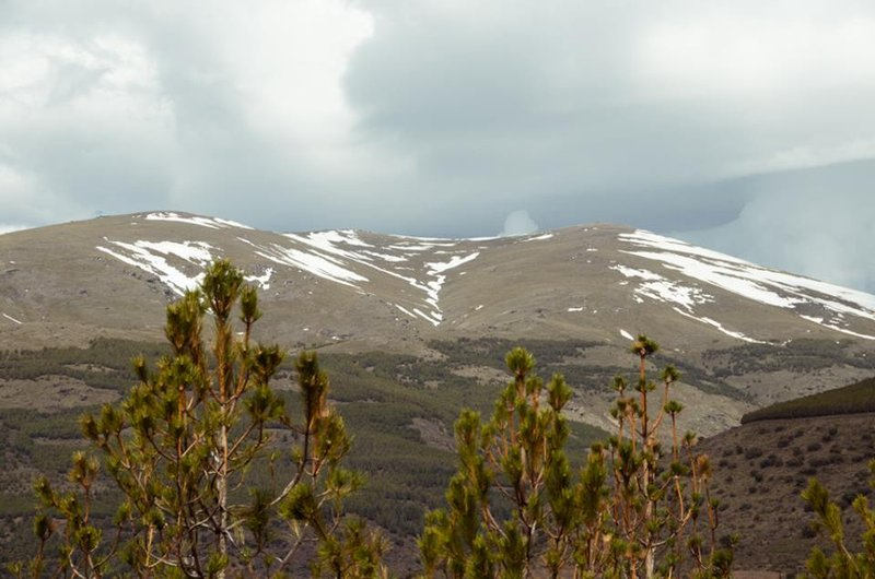 Alpujarra Sulair