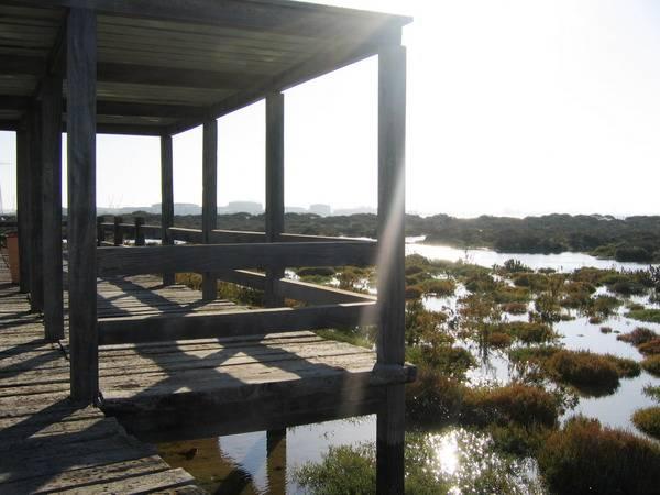 Parque Metropolitano de Los Toruños y Pinar de la Algaida