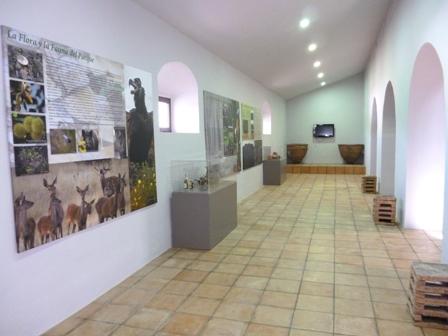 Oficina de Turismo de Aroche