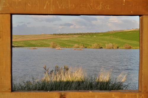Reserva Natural Lagunas de Campillos - Laguna Redonda