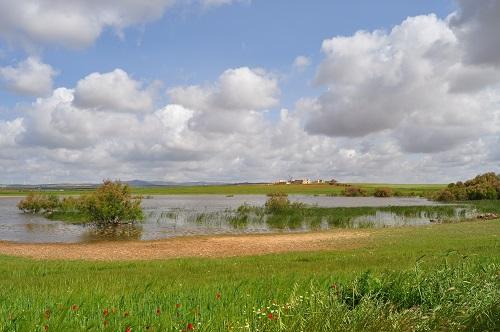 Reserva Natural Lagunas de Campillos - Laguna del Lobón
