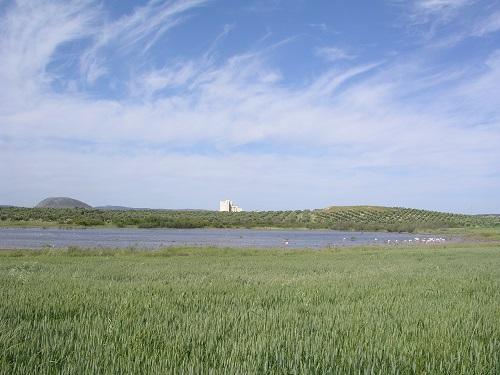 Reserva Natural Lagunas de Campillos - Laguna Marcela