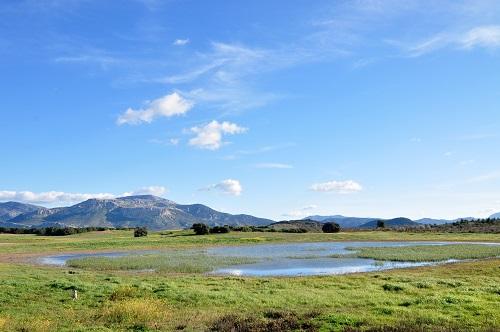 Reserva Natural Lagunas de Campillos - Laguna de Panza
