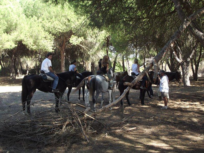 Ruta Experiencia Doñana