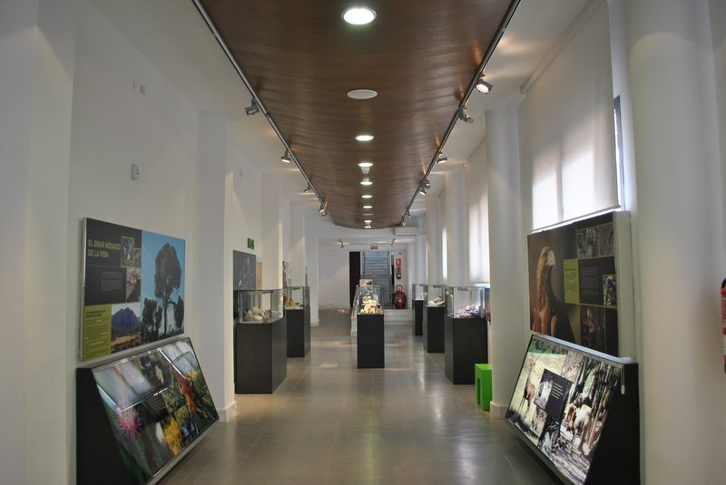 Museo de La Carolina
