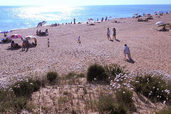 Punta Umbría