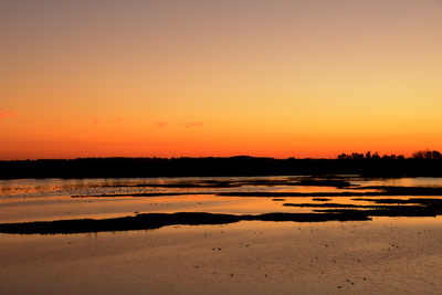 When the sun goes down over the El Rocío marsh