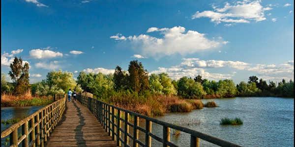 Senderismo por el Corredor Verde. Wadi-Amar El río de príncipes.