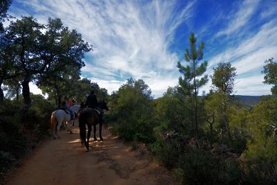 Zu Pferd durch die Sierra de Aracena