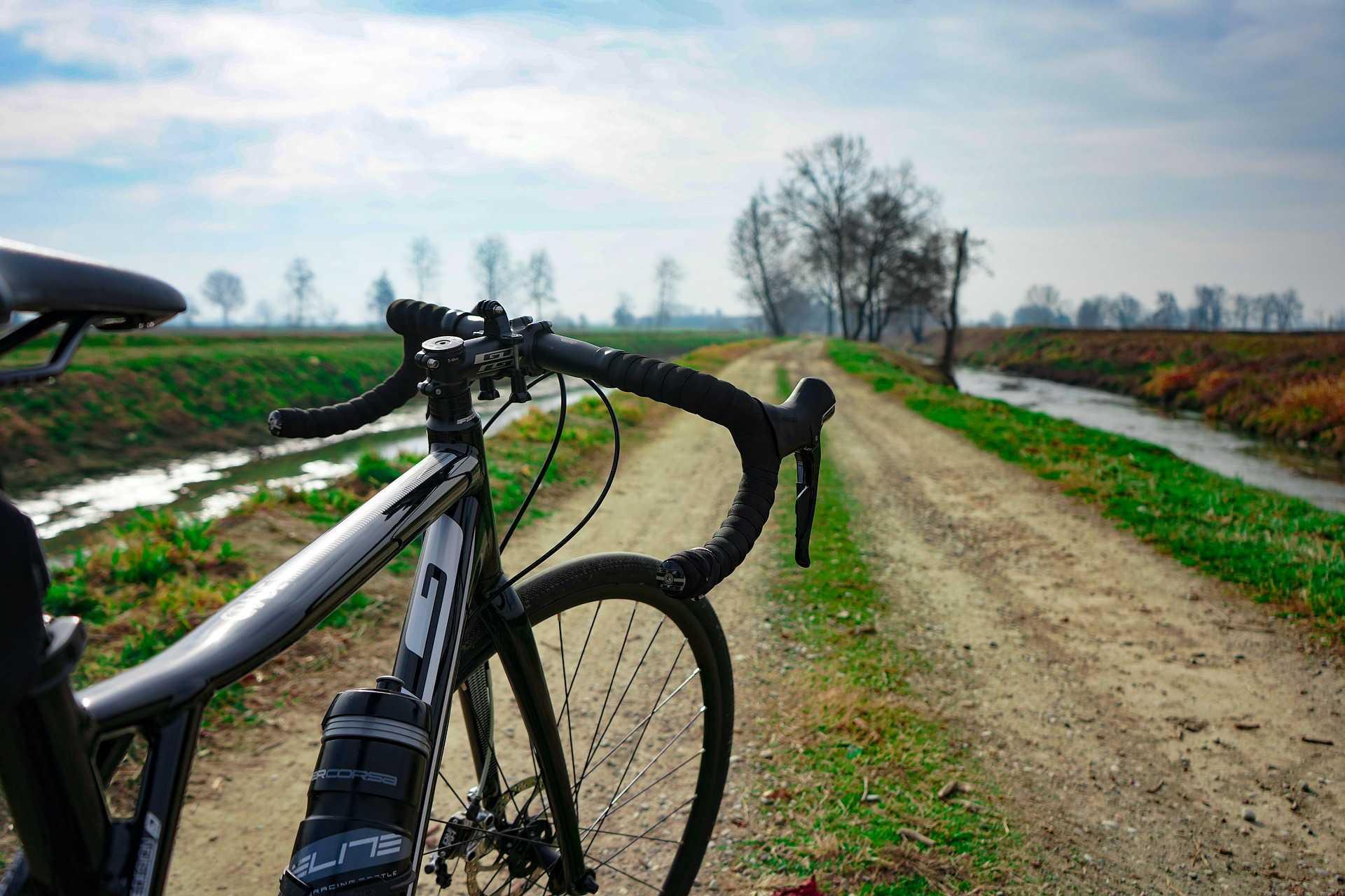 Cycling through salt marshes