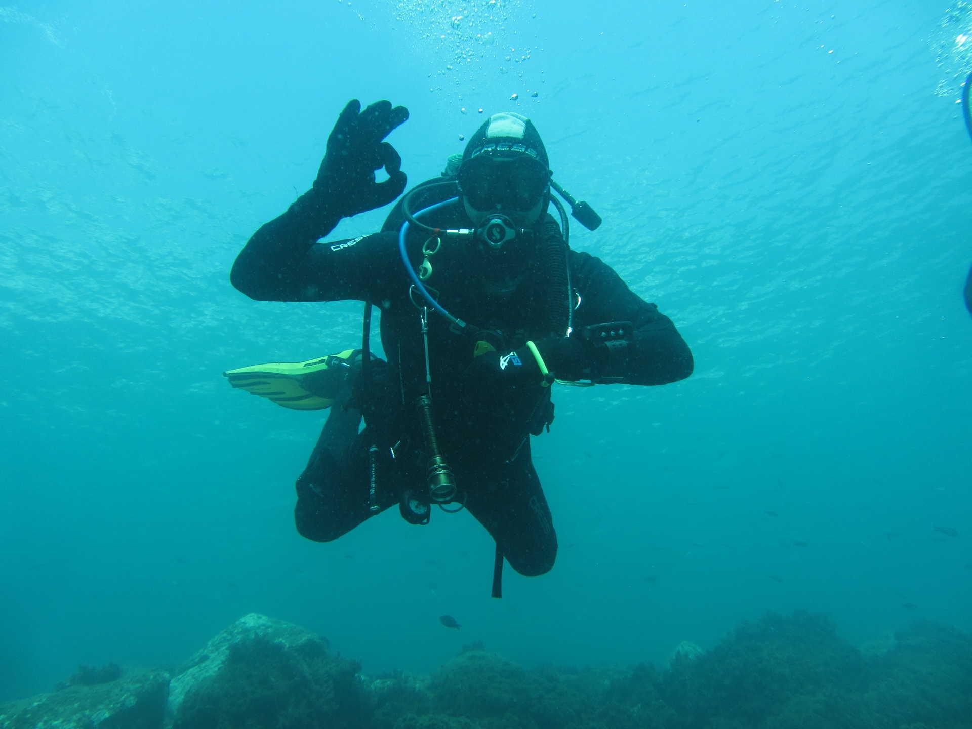 Hamelin: Curso de Iniciación al Buceo Open Water Diver - Actividad  (La Herradura)