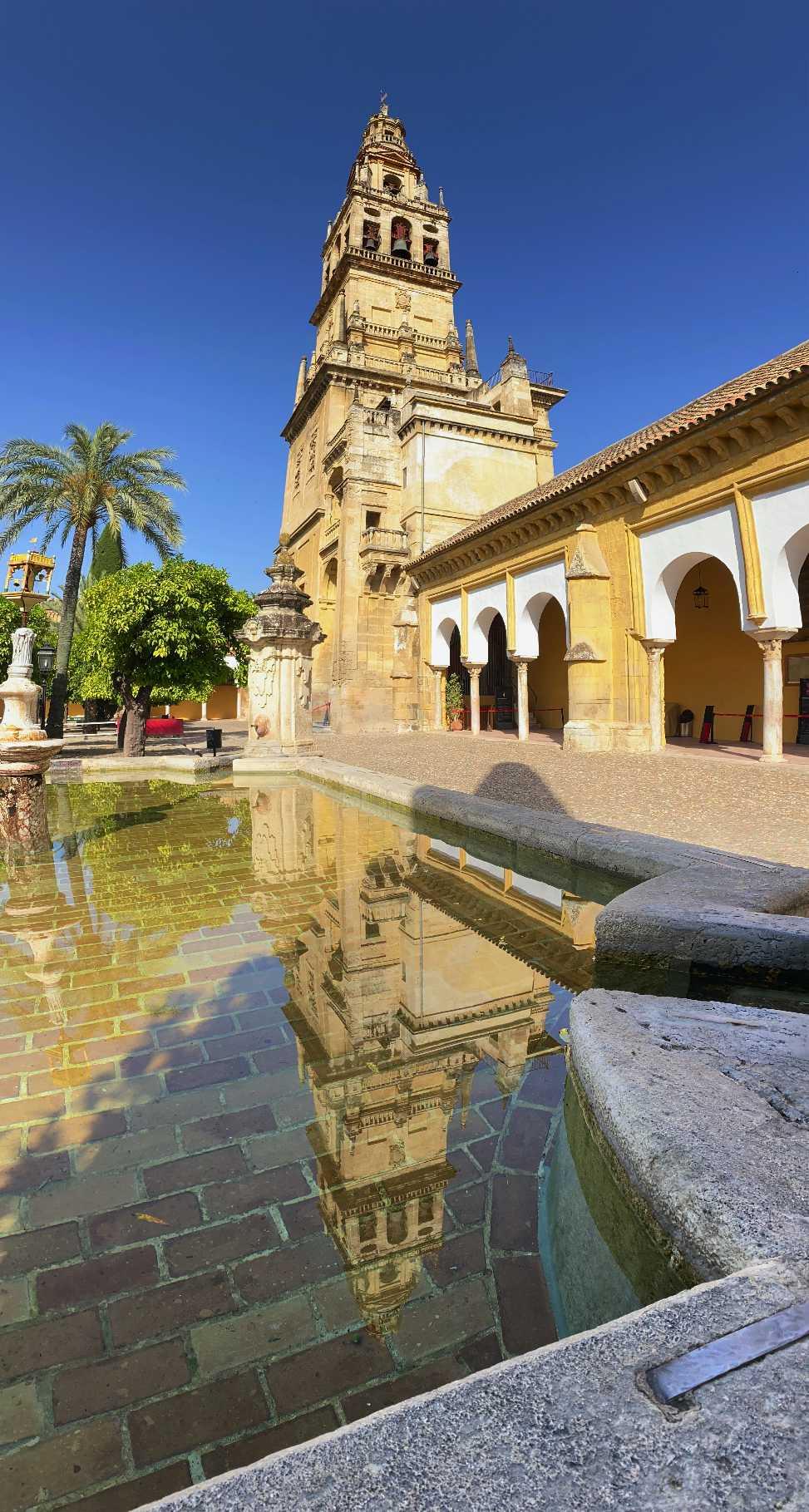 100% DESCUENTO. Al contratar una visita te invitamos a una ruta a pie por Córdoba