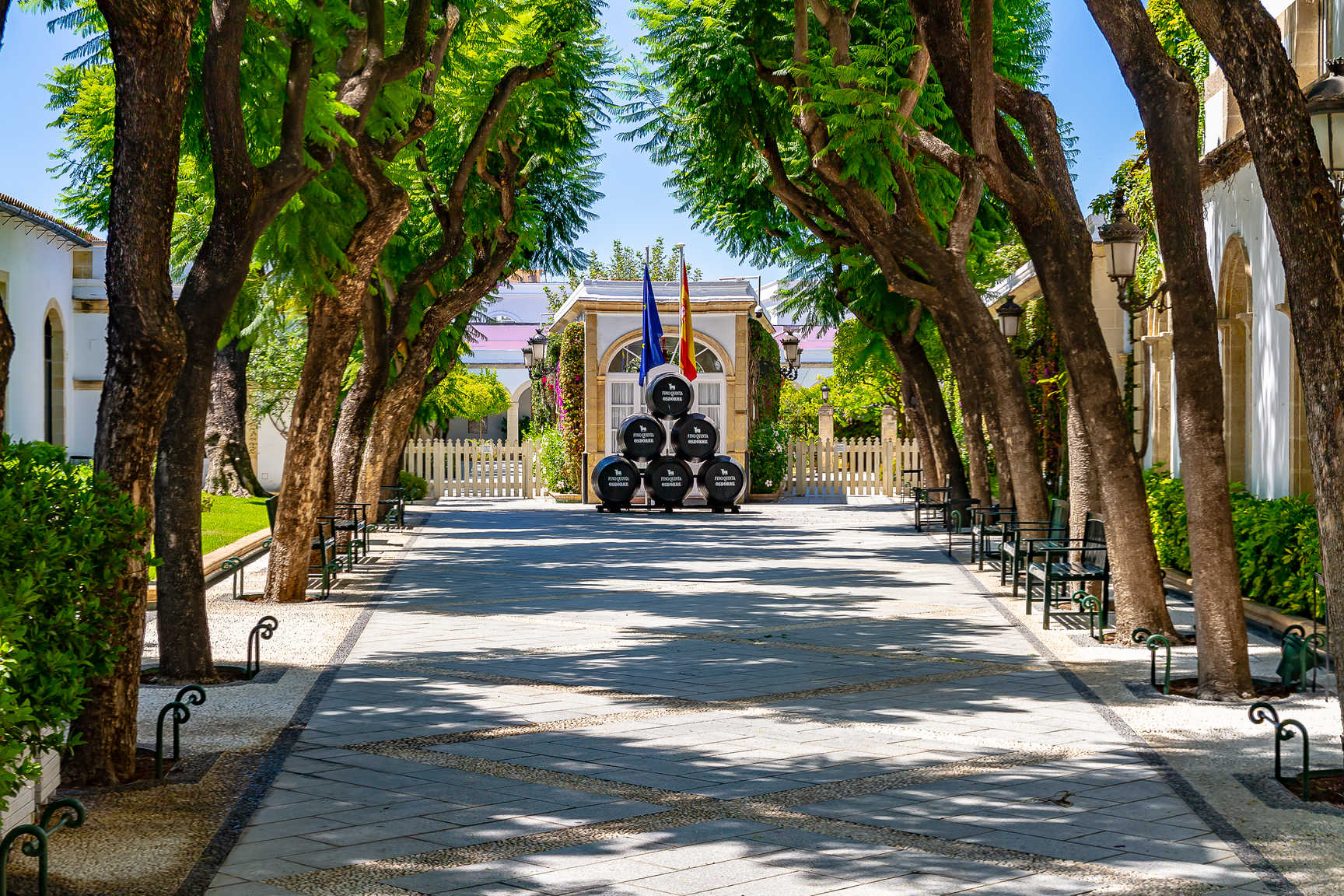 Bodegas Osborne El Puerto de Santa María--Visita guiada con degustación  de ibéricos Cinco Jotas 20% descuento