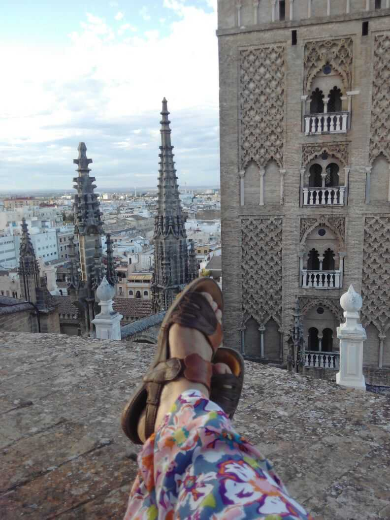 View from Seville Cathedral's rooftop