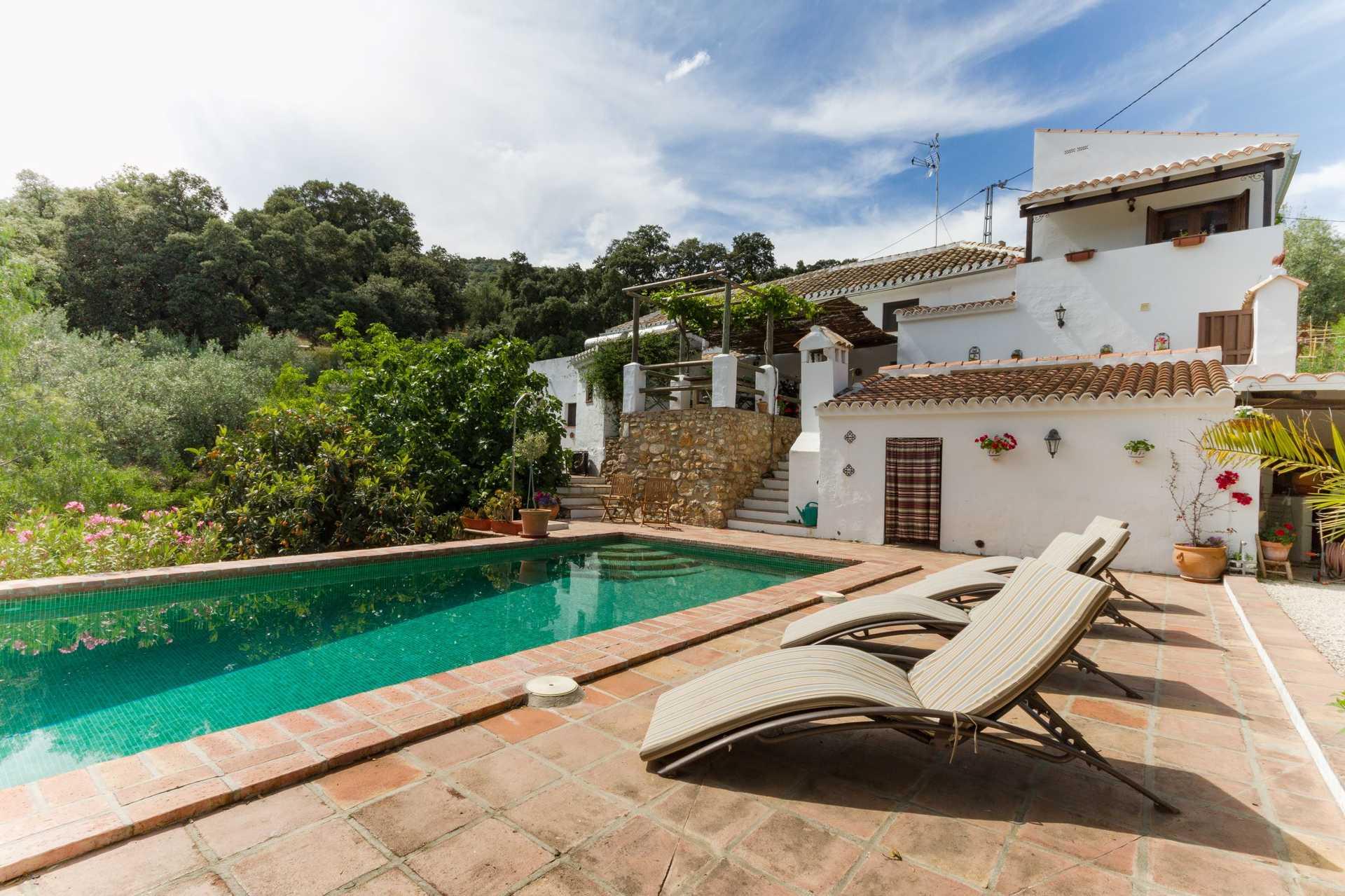 Tu casa en Iznájar, tu familia en Andalucía.