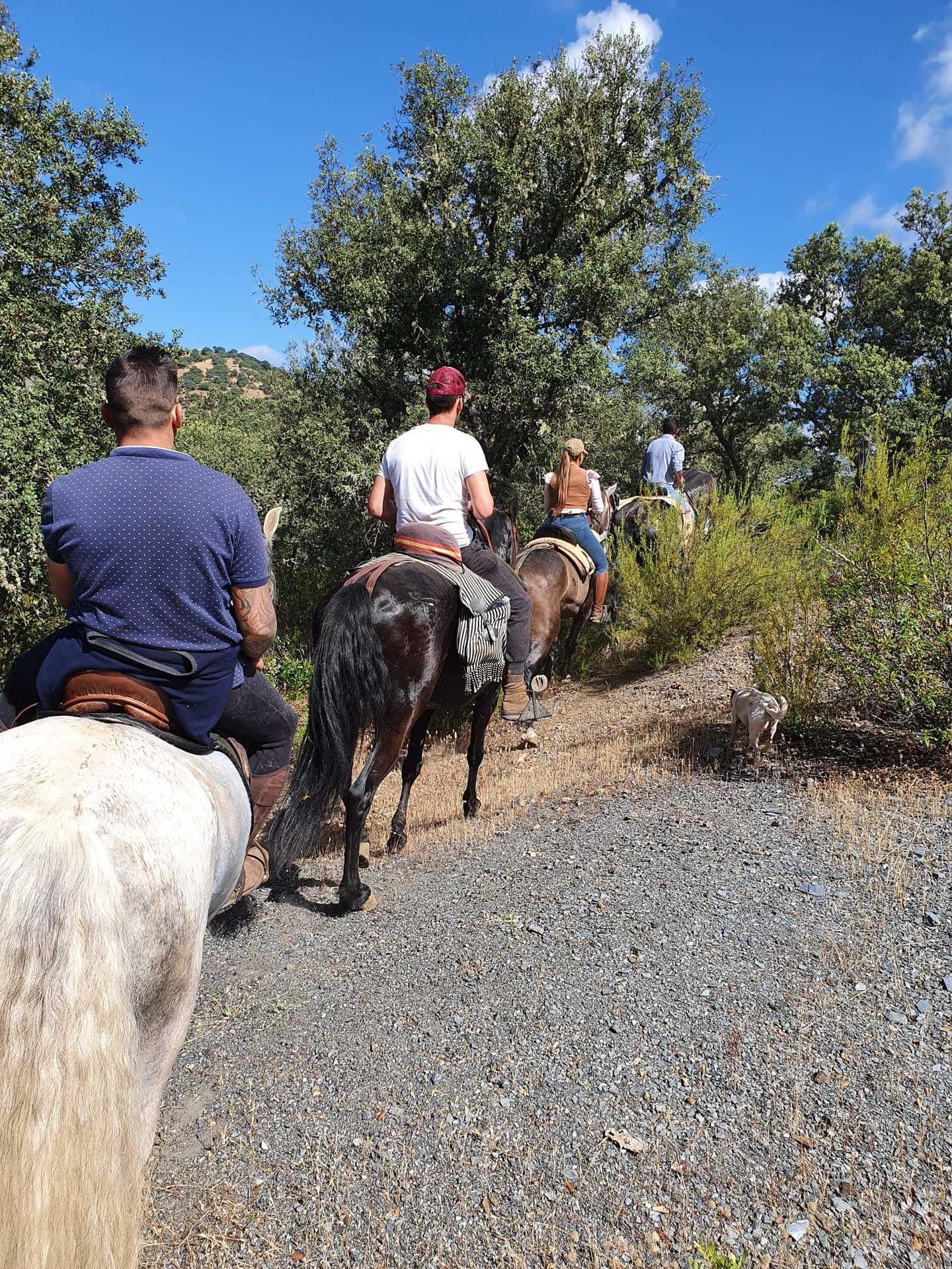 Hamelin: Rutas a caballo por la Sierra Morena de Jaén - Actividad  (Baños de la Encina)