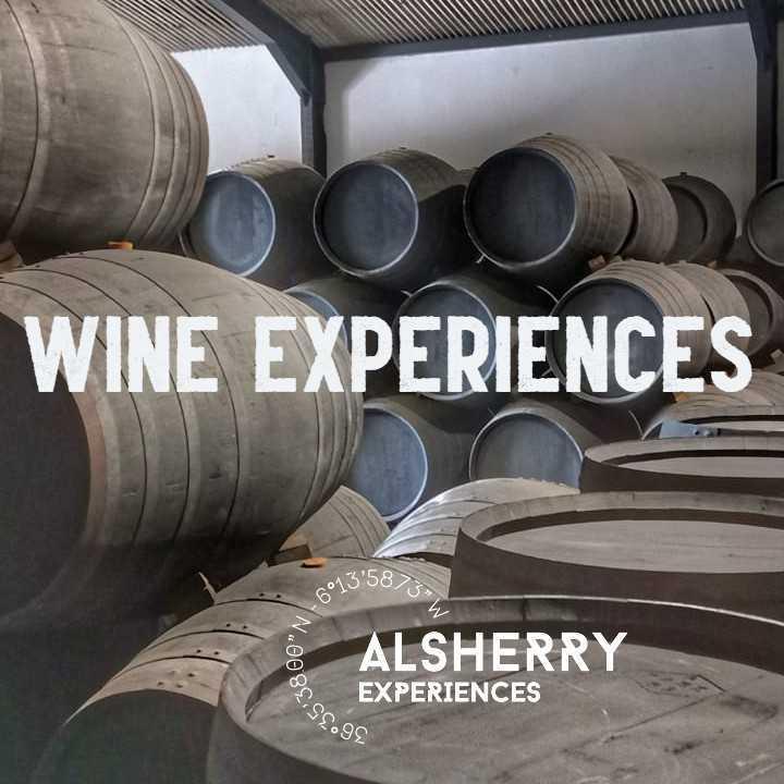 Besichtigung einer Bodega mit Weinverkostung