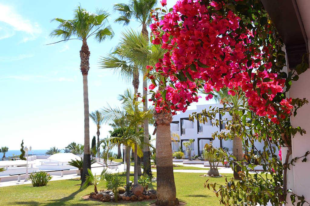 Viaje al otoño, otoño en Parador de Mojácar (Almería)