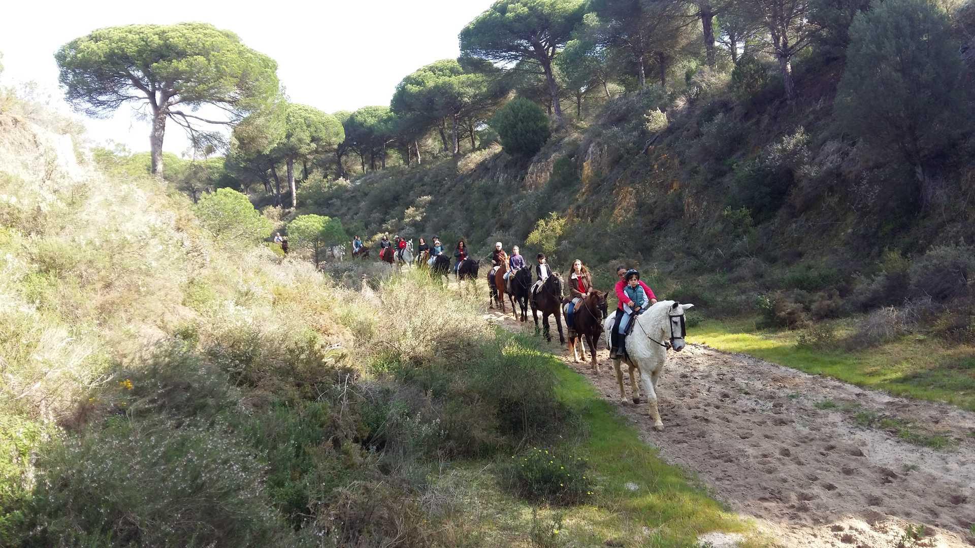 Paseo a caballo por playa, parque y dunas
