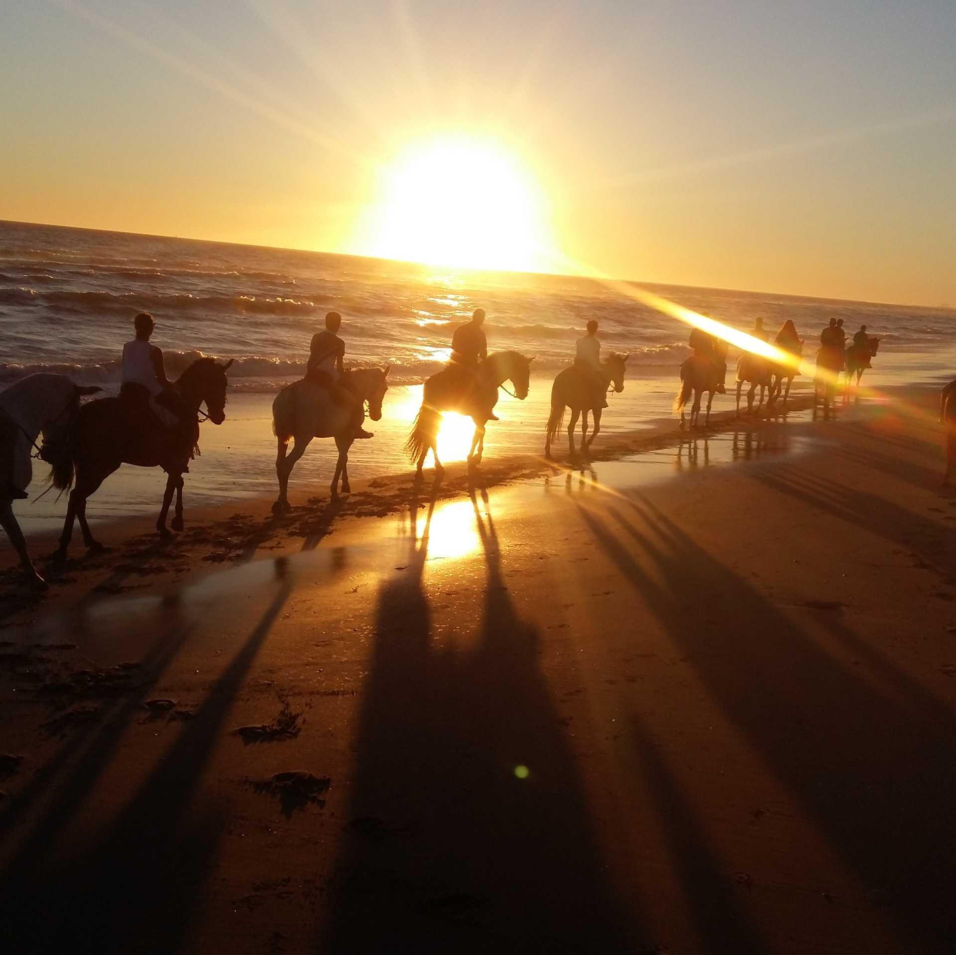 Hamelin: Ruta puesta del sol:Disfruta de un mágico atardecer a caballo en las playas vírgenes - Actividad  (Lucena del Puerto)