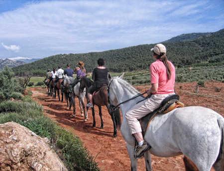 Español & Paseos a Caballo en Granada, España